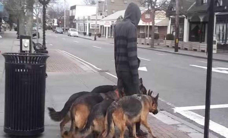 Úgy tűnik, mintha a kutyáit sétáltatná