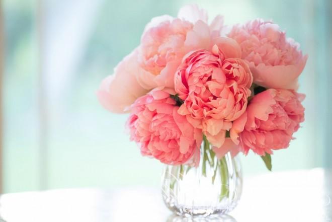 Nem mindegy mi a kedvenc virágod! NÉZD MEG A VIRÁGHOROSZKÓPODAT!