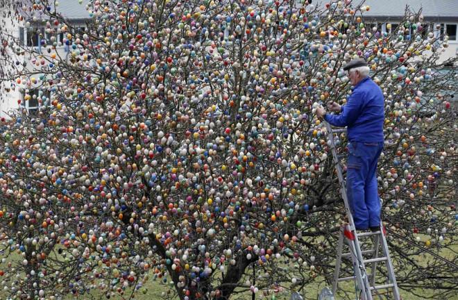 HIHETETLEN! Egy német család 10.000 húsvéti tojással dekorált egy fát!