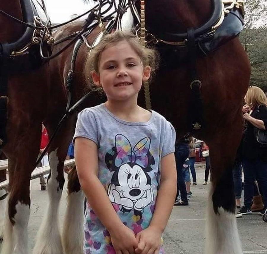 Az apa lefényképezi kislányát a ló előtt, csak később vették észre, hogy nem csak a kislány pózol a képen