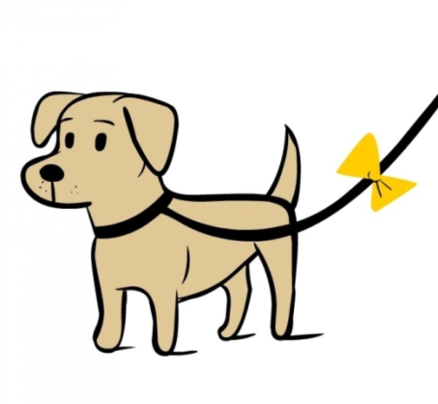 Ezt jelenti a sárga jelzés a kutyusok pórázán!