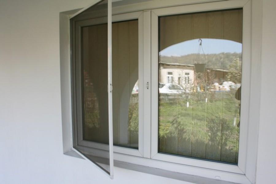 Ezeket a növényeket tedd ki az ablakodban, hogy elkerüld a szúnyoginváziót!
