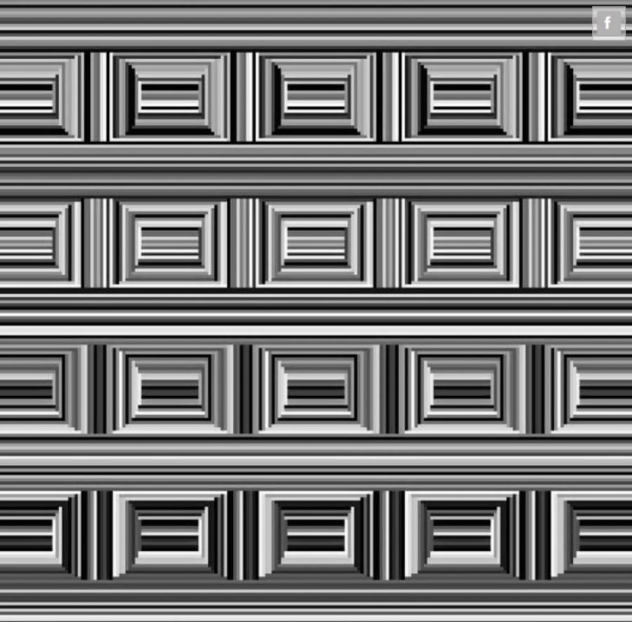Te hány kört látsz ezen a képen? Elhiszed, ha azt mondjuk 12?