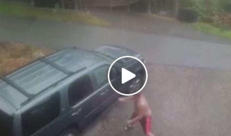 A kisfiú szólt, hogy valami mozog az autójukban. Ment is az apa megnézni, de azonnal el is ugrott az autótól (videó)
