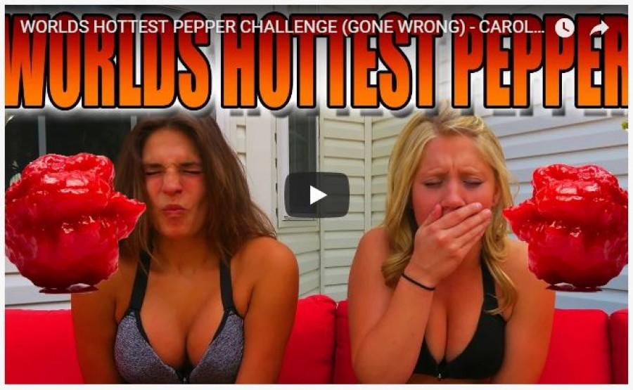 A két bevállalós lány belekóstolt egy hihetetlenül csípős paprikába, és nagyon csúnya vége lett!