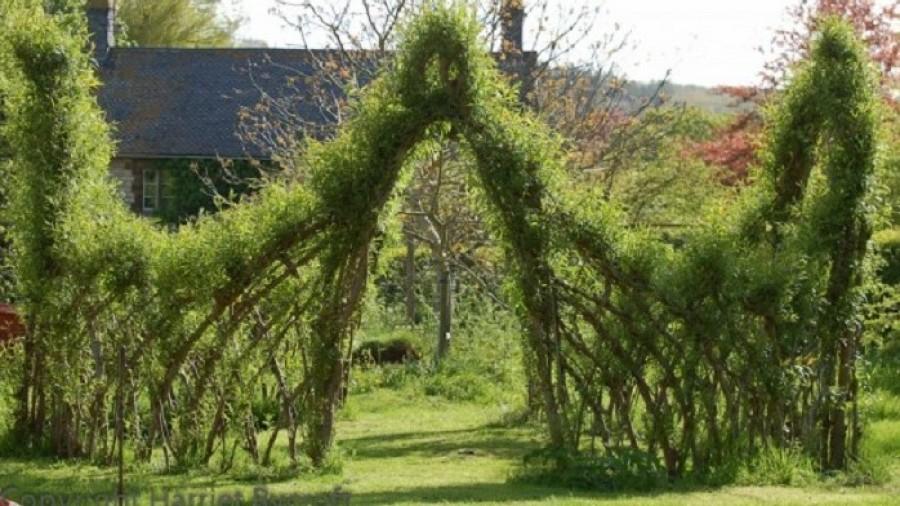 Meseszép élő kerítések fűzfából - bárki elkészítheti!