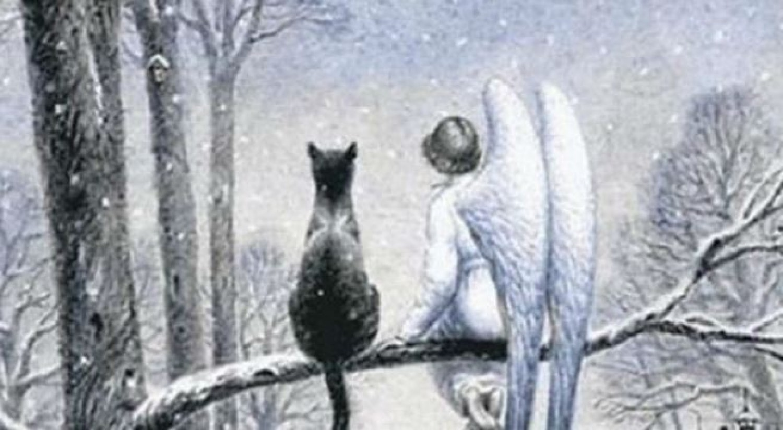 A macska és az angyal: egy megható történet, amit jó lenne, ha mindenki elolvasna